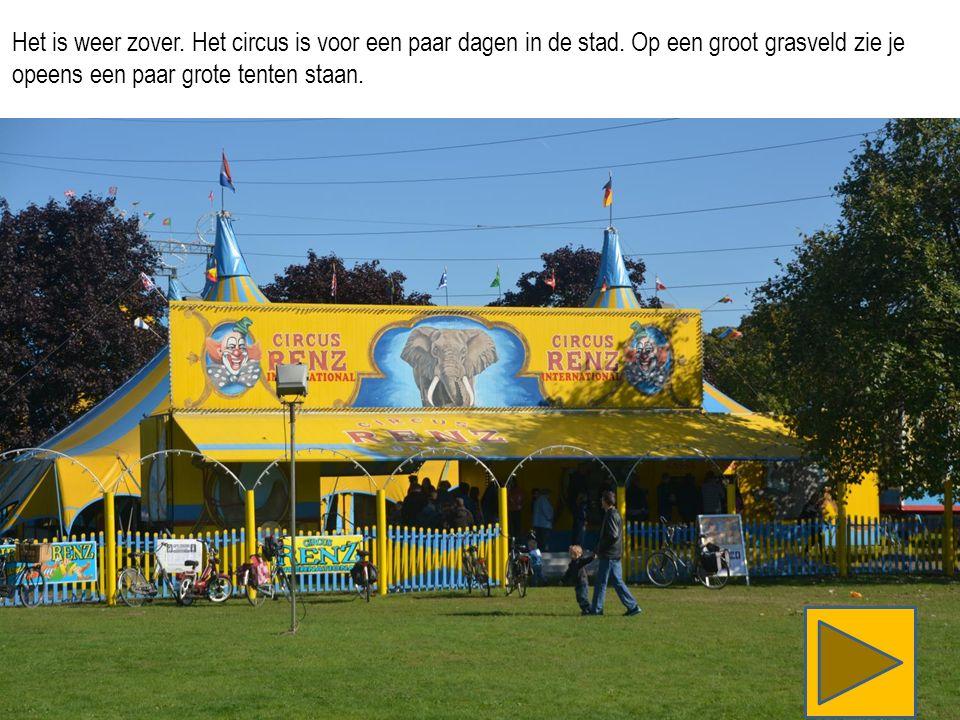 Het is weer zover. Het circus is voor een paar dagen in de stad.
