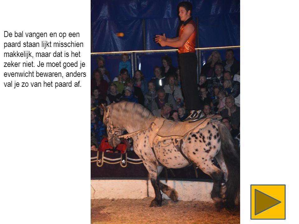 De bal vangen en op een paard staan lijkt misschien makkelijk, maar dat is het zeker niet.