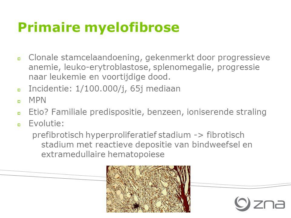 Primaire myelofibrose Clonale stamcelaandoening, gekenmerkt door progressieve anemie, leuko-erytroblastose, splenomegalie, progressie naar leukemie en voortijdige dood.