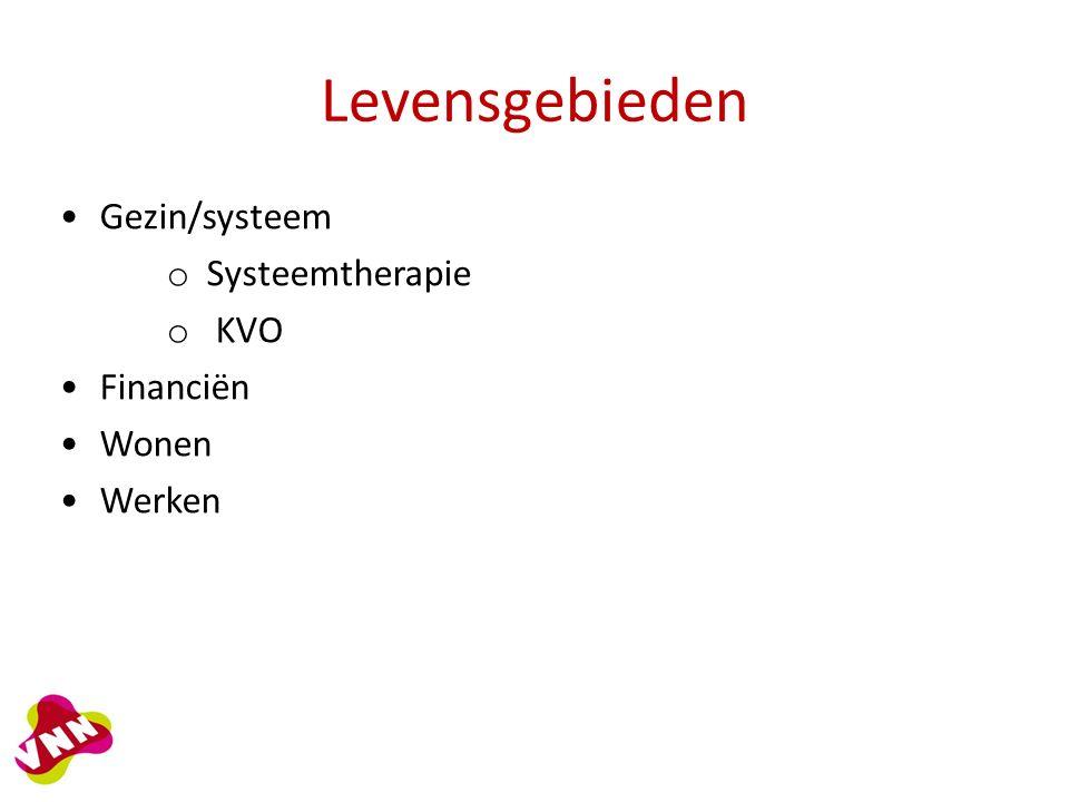 Levensgebieden Gezin/systeem o Systeemtherapie o KVO Financiën Wonen Werken