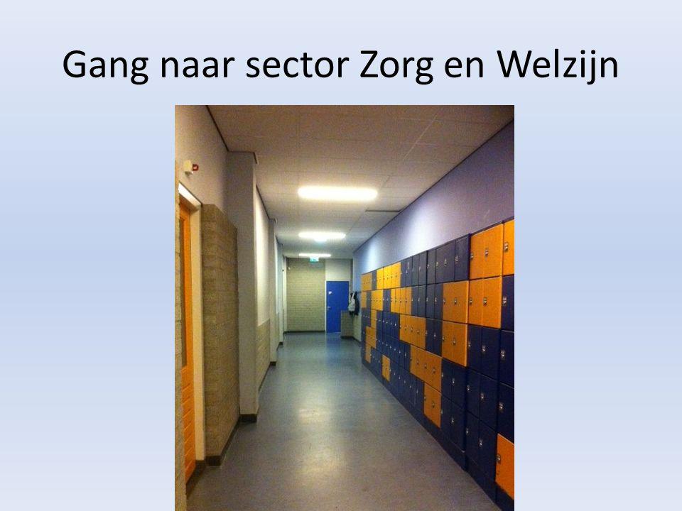 Gang naar sector Zorg en Welzijn
