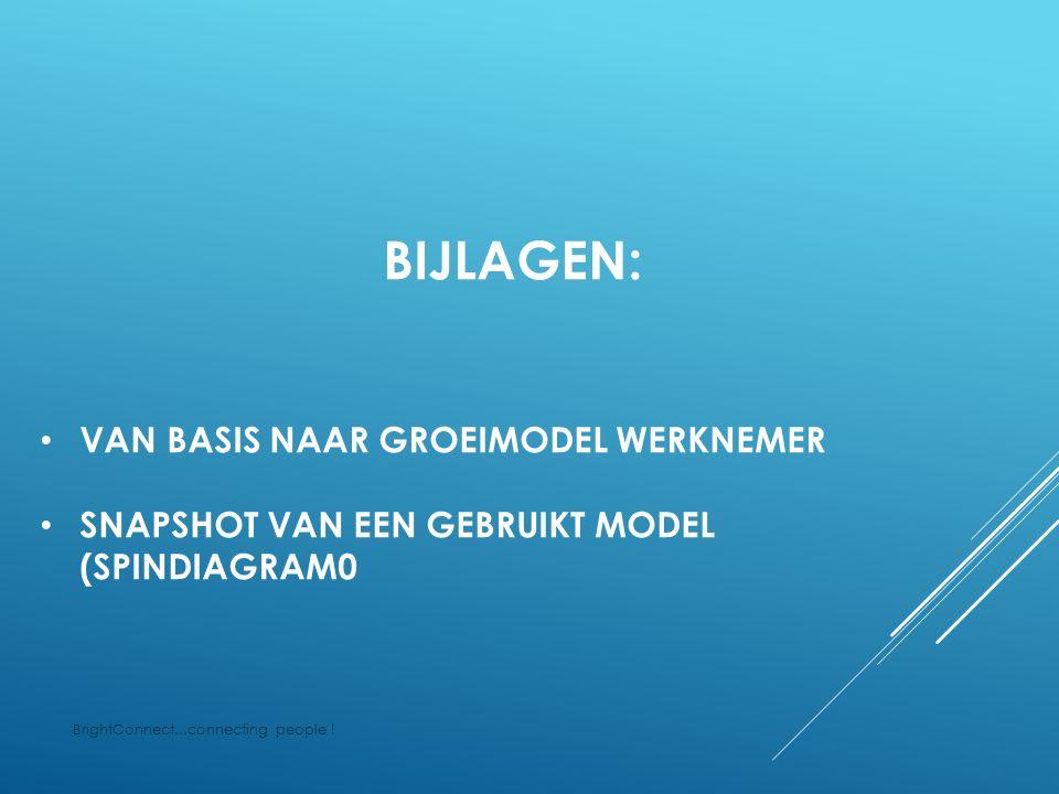 Presentatie Huidige competenties Beperkt houdbaar en kwetsbaar 1 - BASIS MODEL WERKNEMER BrightConnect...connecting people !