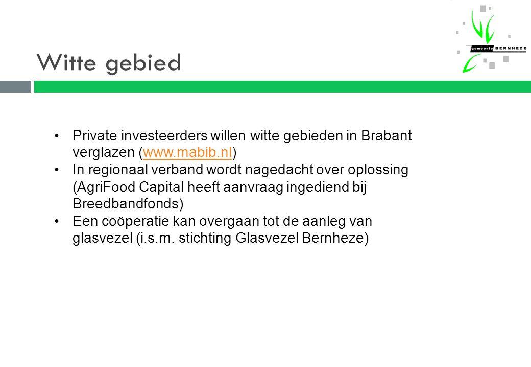 Witte gebied Private investeerders willen witte gebieden in Brabant verglazen (www.mabib.nl)www.mabib.nl In regionaal verband wordt nagedacht over oplossing (AgriFood Capital heeft aanvraag ingediend bij Breedbandfonds) Een coöperatie kan overgaan tot de aanleg van glasvezel (i.s.m.