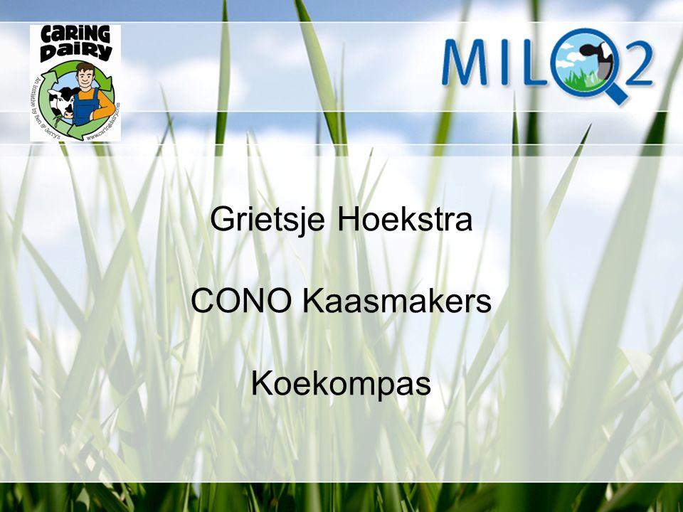 Grietsje Hoekstra CONO Kaasmakers Koekompas