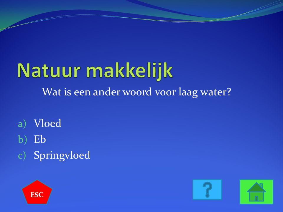 Wat is een ander woord voor laag water? a) Vloed b) Eb c) Springvloed ESC