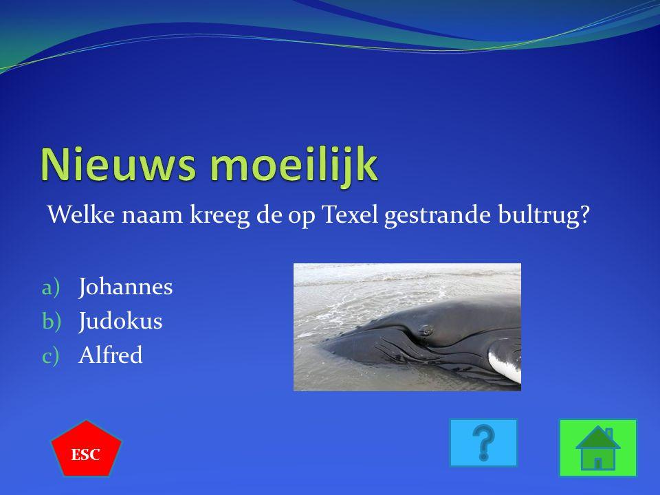 Welke naam kreeg de op Texel gestrande bultrug? a) Johannes b) Judokus c) Alfred ESC