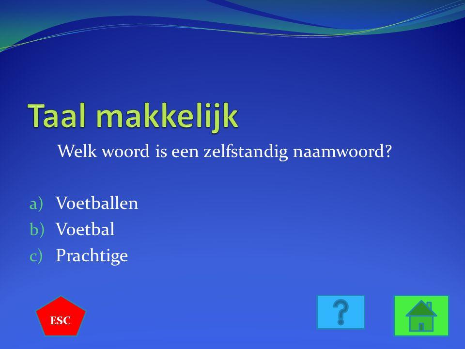 Wie is deze beroemde Nederlandse Schilder? a) Rembrandt b) Mondriaan c) Van Gogh ESC