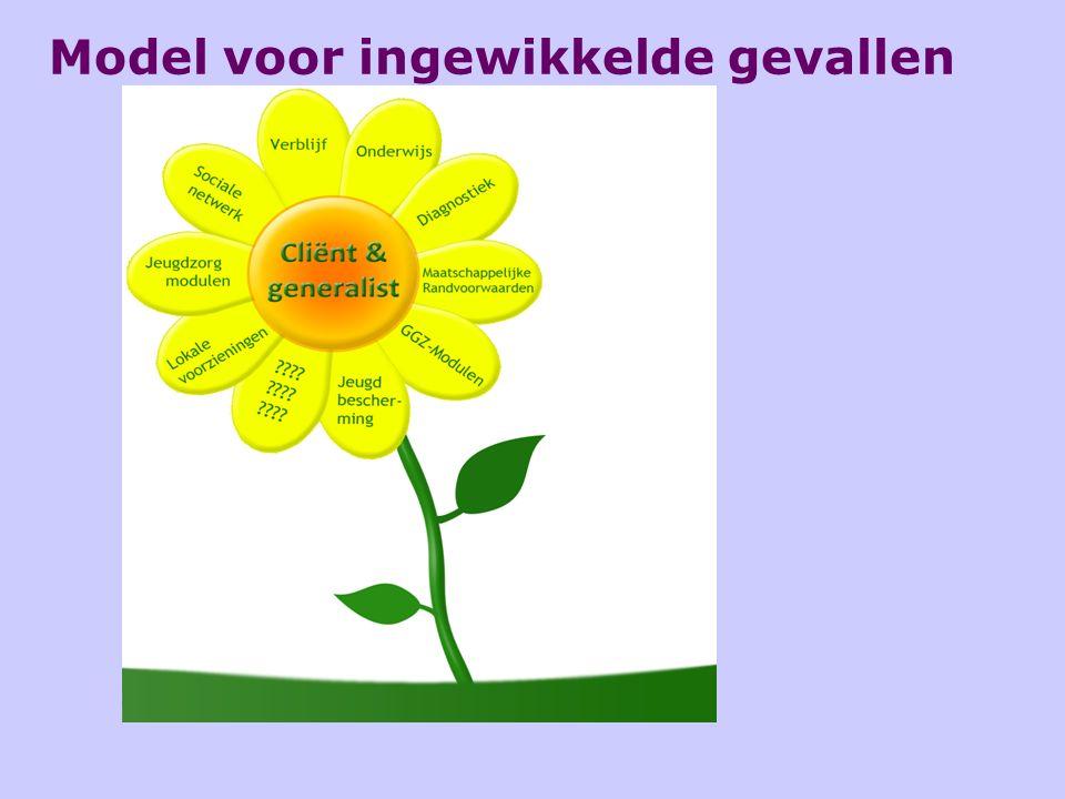 Model voor ingewikkelde gevallen