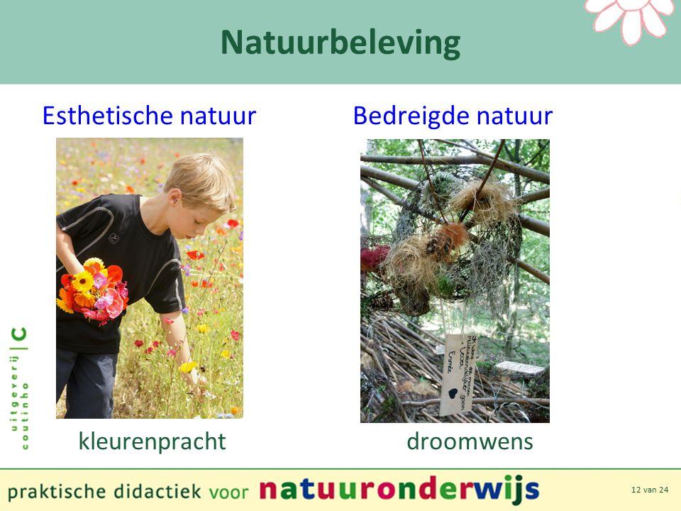 12 van 24 Natuurbeleving Esthetische natuur Bedreigde natuur kleurenpracht droomwens