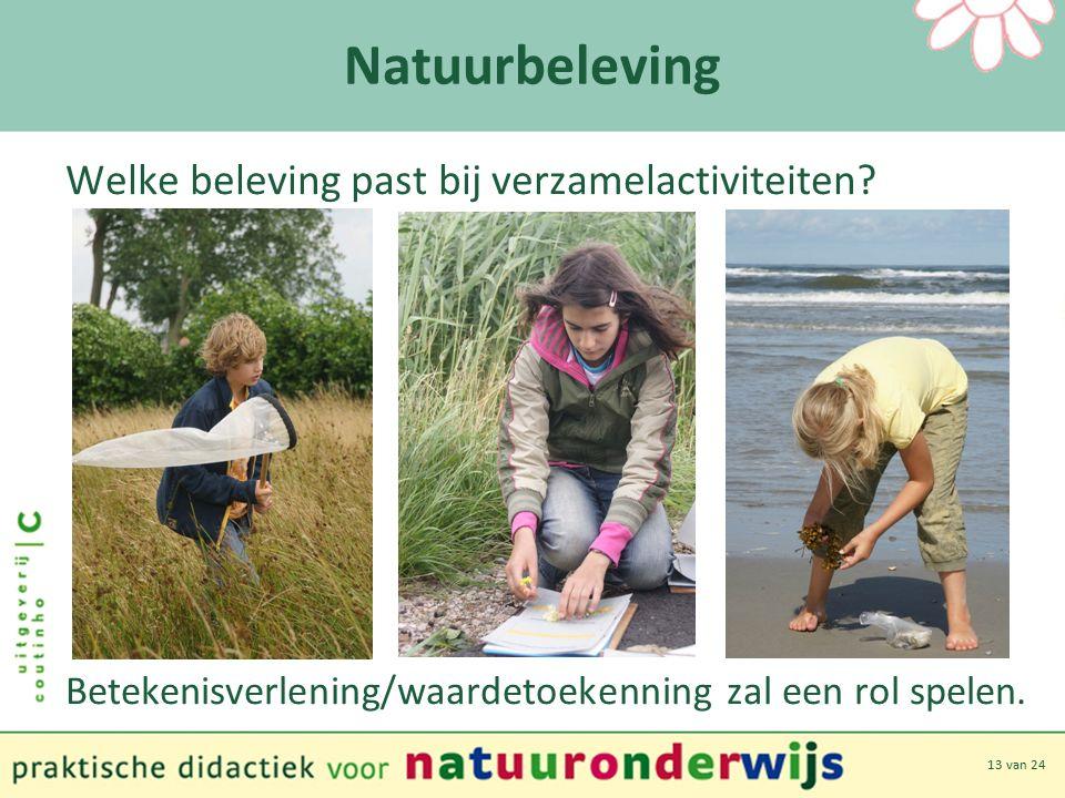 13 van 24 Natuurbeleving Welke beleving past bij verzamelactiviteiten.