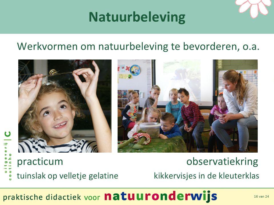 16 van 24 Natuurbeleving Werkvormen om natuurbeleving te bevorderen, o.a.