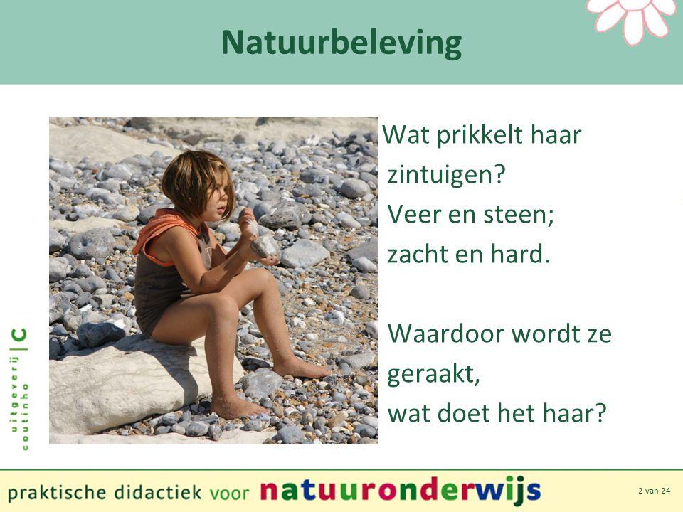 2 van 24 Natuurbeleving Wat prikkelt haar zintuigen.
