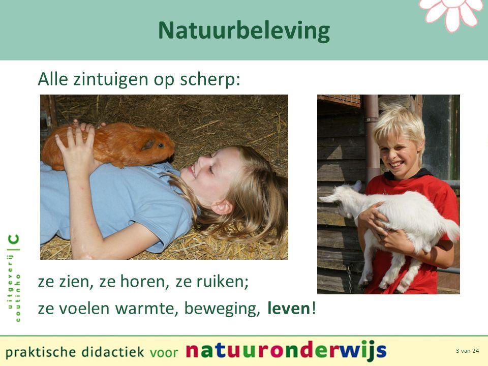 3 van 24 Natuurbeleving Alle zintuigen op scherp: ze zien, ze horen, ze ruiken; ze voelen warmte, beweging, leven!