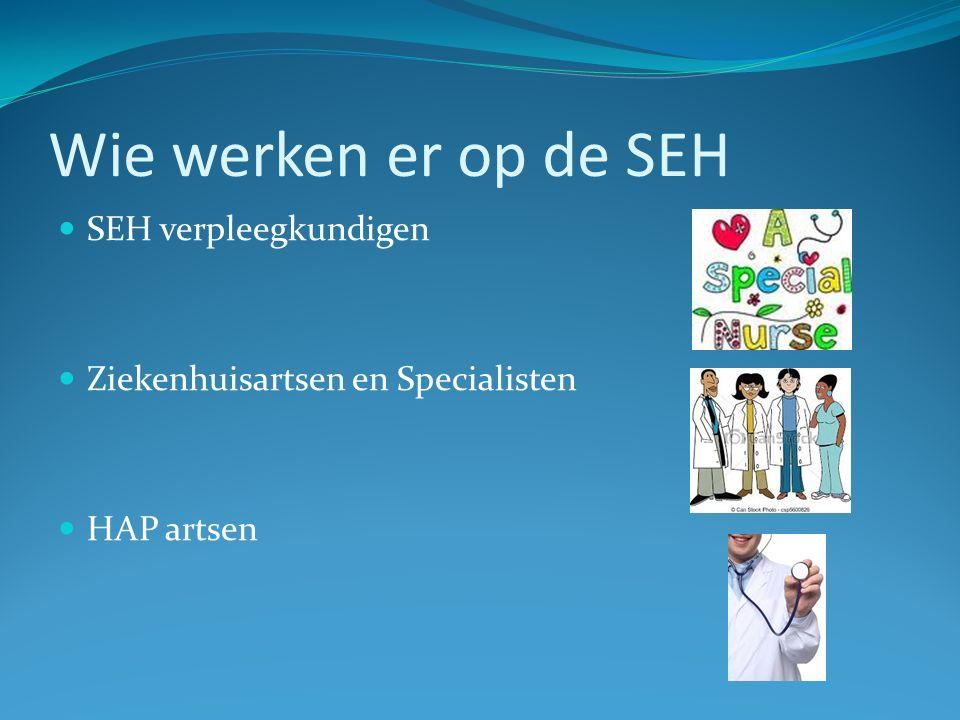 Wie werken er op de SEH SEH verpleegkundigen Ziekenhuisartsen en Specialisten HAP artsen