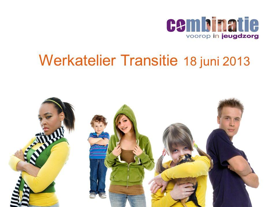 Werkatelier Transitie 18 juni 2013
