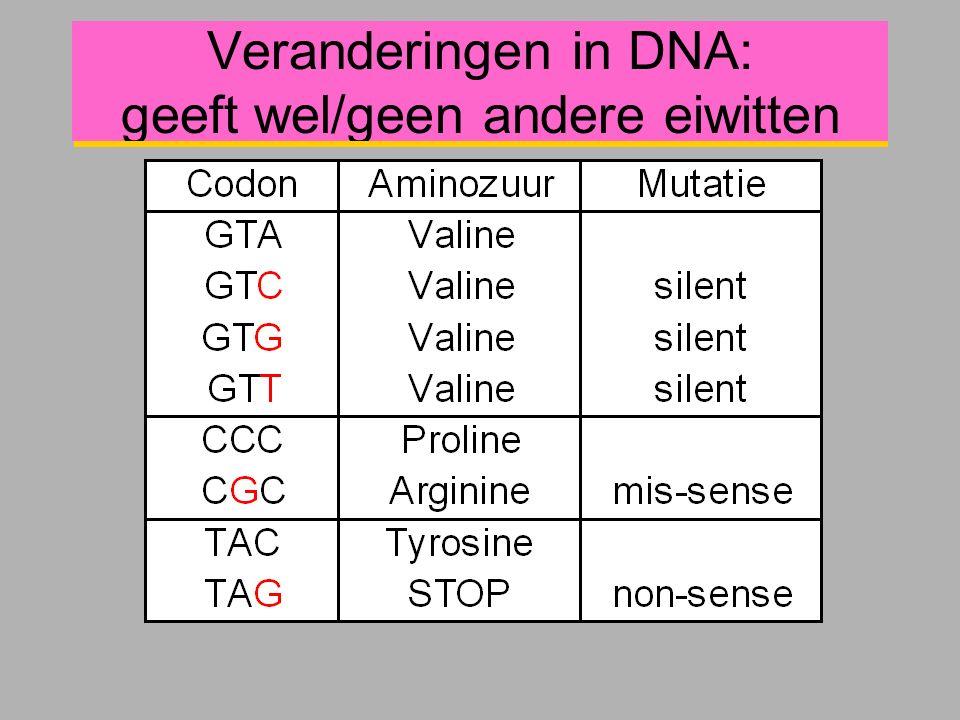 Veranderingen in DNA: geeft wel/geen andere eiwitten