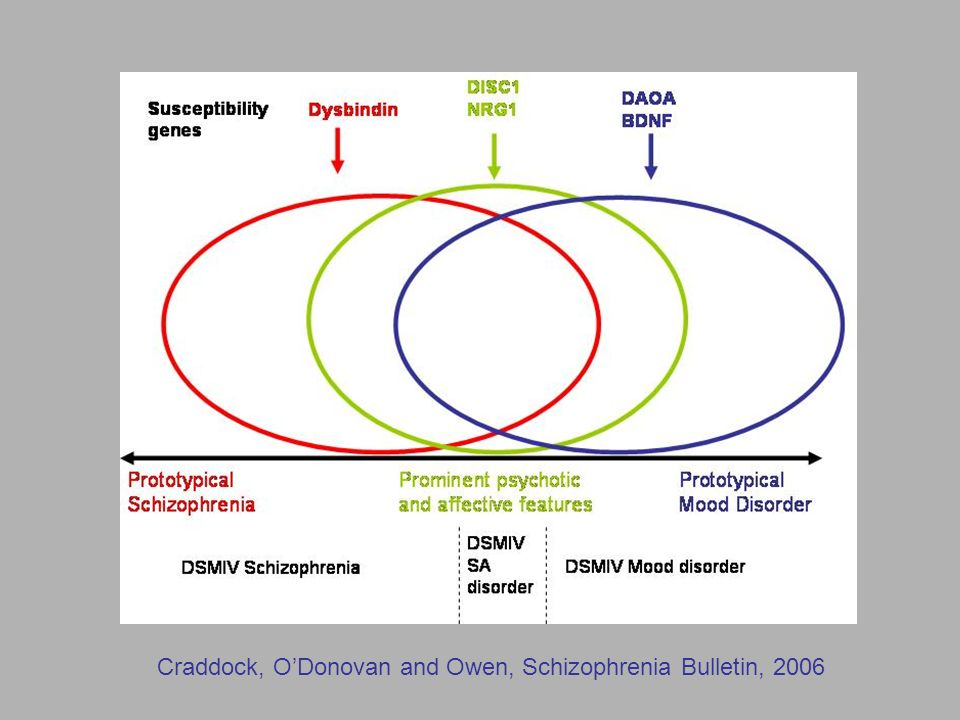 Craddock, O'Donovan and Owen, Schizophrenia Bulletin, 2006