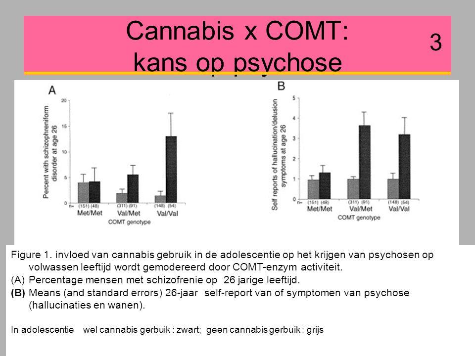 Cannabis x COMT: kans op psychose 3 Figure 1.