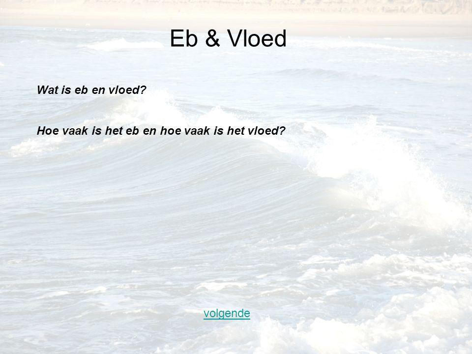 volgende Eb & Vloed Wat is eb en vloed? Hoe vaak is het eb en hoe vaak is het vloed?