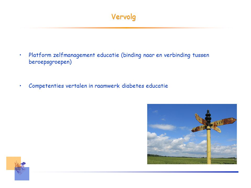 Vervolg Platform zelfmanagement educatie (binding naar en verbinding tussen beroepsgroepen) Competenties vertalen in raamwerk diabetes educatie
