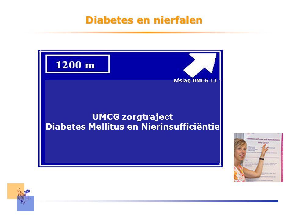 Diabetes en nierfalen UMCG zorgtraject Diabetes Mellitus en Nierinsufficiëntie Afslag UMCG 13