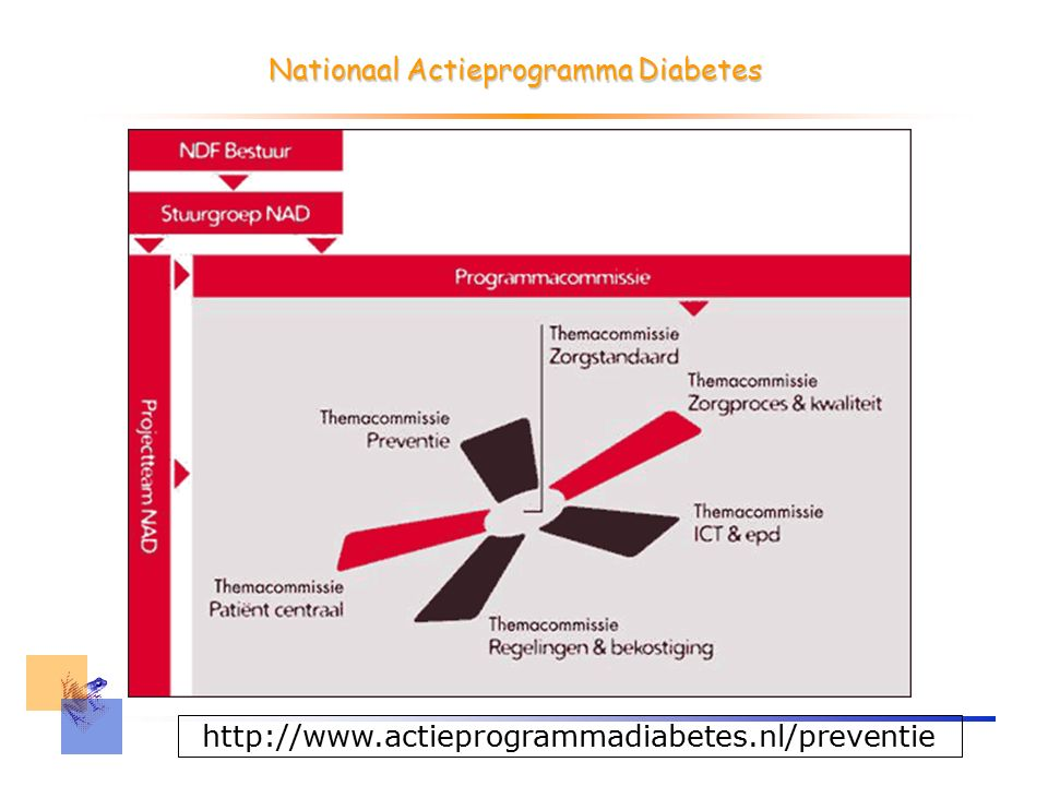 Nationaal actieprogramma Diabetes Samenhang in de strijd tegen diabetes –Preventie –Zorg Groot en ernstig probleem Speerpunt in overheidsbeleid –patiënten, zorgverleners, behandelaars, verzekeraars, wetenschappelijk onderzoekers en de farmaceutische industrie.