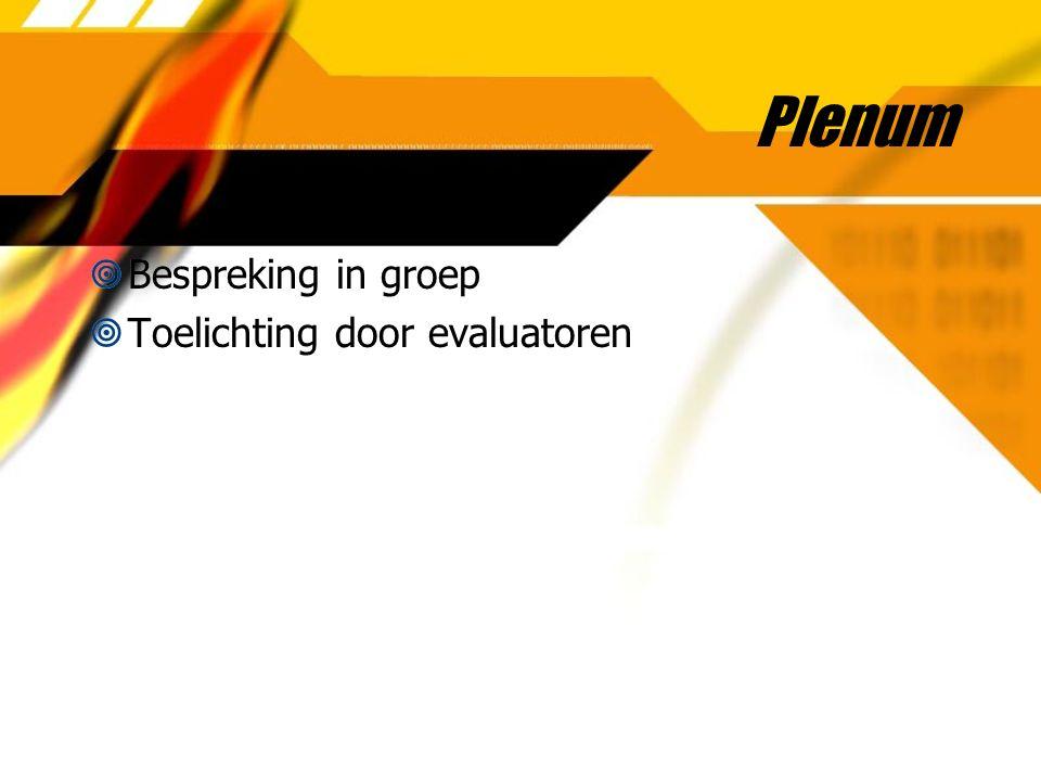 Plenum  Bespreking in groep  Toelichting door evaluatoren  Bespreking in groep  Toelichting door evaluatoren