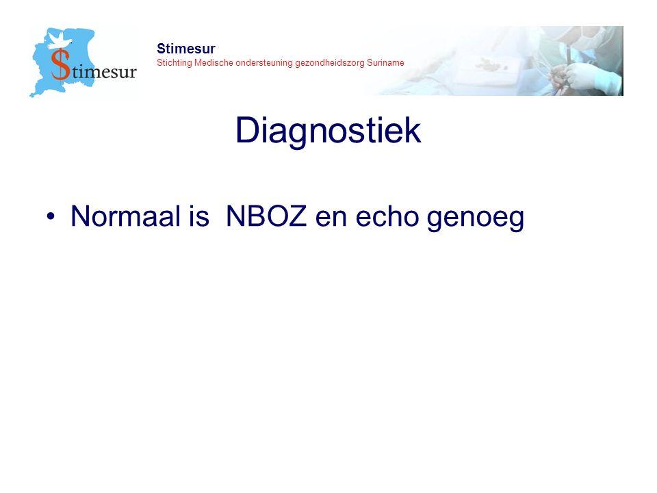 Stimesur Stichting Medische ondersteuning gezondheidszorg Suriname Diagnostiek Normaal is NBOZ en echo genoeg