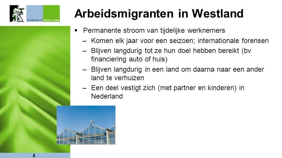 4 Arbeidsmigranten in Westland  Permanente stroom van tijdelijke werknemers –Komen elk jaar voor een seizoen; internationale forensen –Blijven langdurig tot ze hun doel hebben bereikt (bv financiering auto of huis) –Blijven langdurig in een land om daarna naar een ander land te verhuizen –Een deel vestigt zich (met partner en kinderen) in Nederland