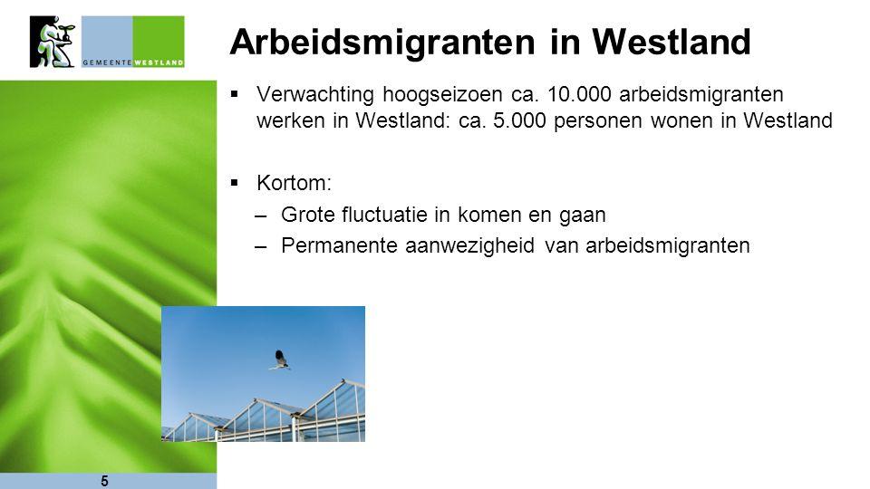Arbeidsmigranten in Westland  Verwachting hoogseizoen ca.