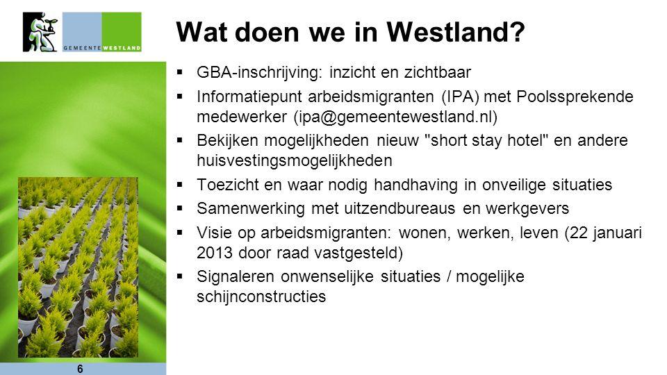 6 Wat doen we in Westland.