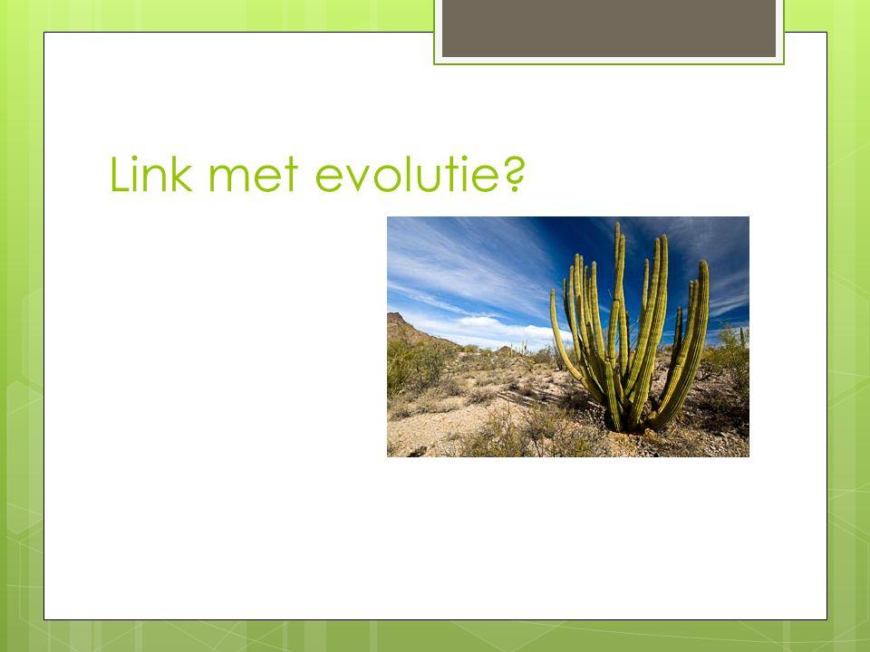 Link met evolutie?