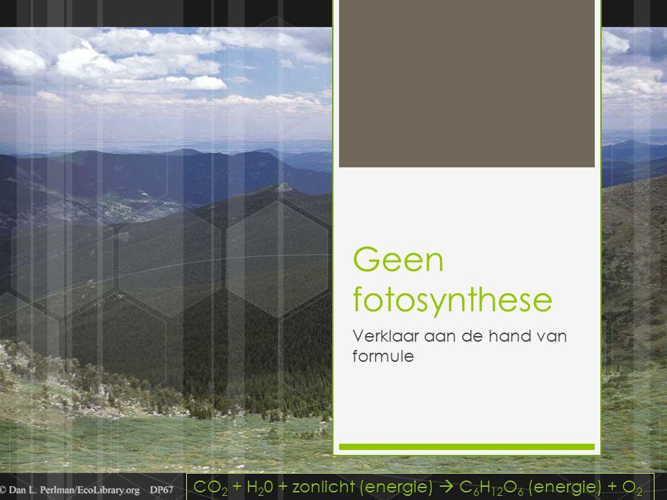 Geen fotosynthese Verklaar aan de hand van formule CO 2 + H 2 0 + zonlicht (energie)  C 6 H 12 O 6 (energie) + O 2