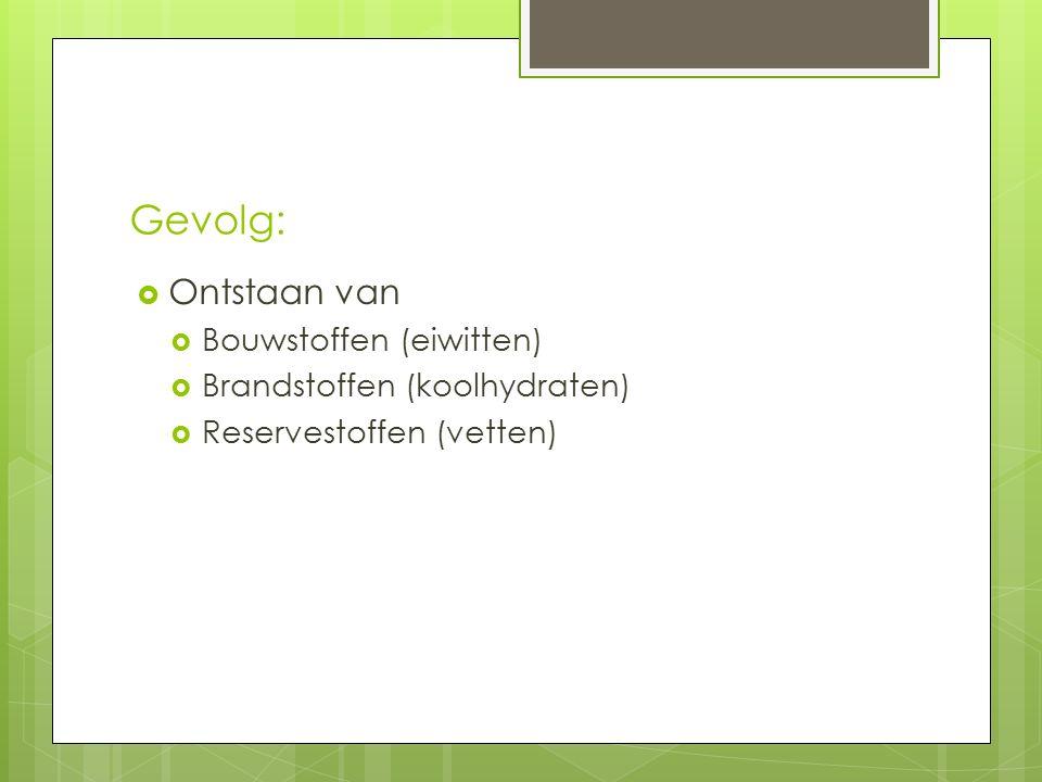 Gevolg:  Ontstaan van  Bouwstoffen (eiwitten)  Brandstoffen (koolhydraten)  Reservestoffen (vetten)