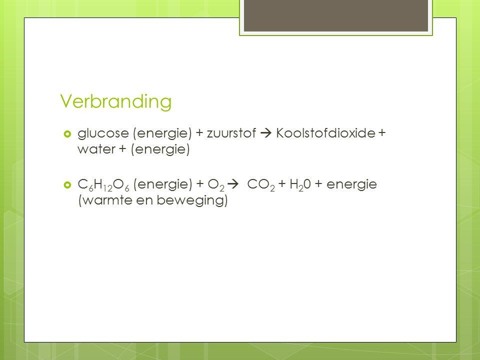 Verbranding  glucose (energie) + zuurstof  Koolstofdioxide + water + (energie)  C 6 H 12 O 6 (energie) + O 2  CO 2 + H 2 0 + energie (warmte en be