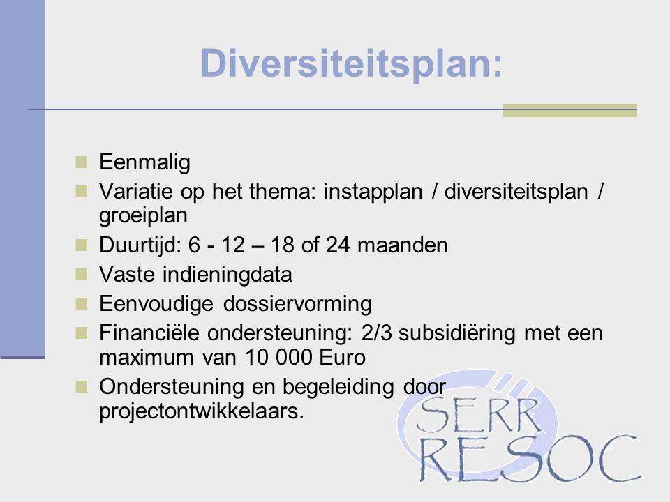 Diversiteitsplan: Eenmalig Variatie op het thema: instapplan / diversiteitsplan / groeiplan Duurtijd: 6 - 12 – 18 of 24 maanden Vaste indieningdata Eenvoudige dossiervorming Financiële ondersteuning: 2/3 subsidiëring met een maximum van 10 000 Euro Ondersteuning en begeleiding door projectontwikkelaars.