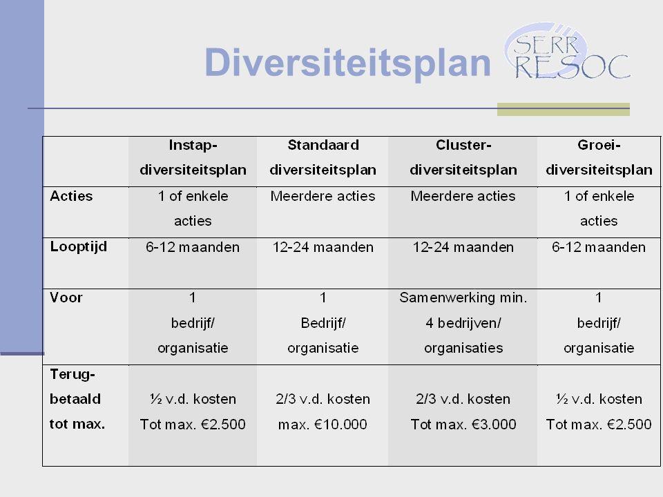 Diversiteitsplan