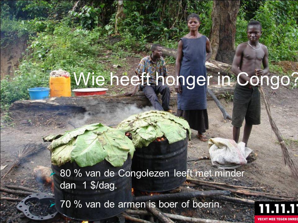 Wie heeft honger in Congo.  80 % van de Congolezen leeft met minder dan 1 $/dag.
