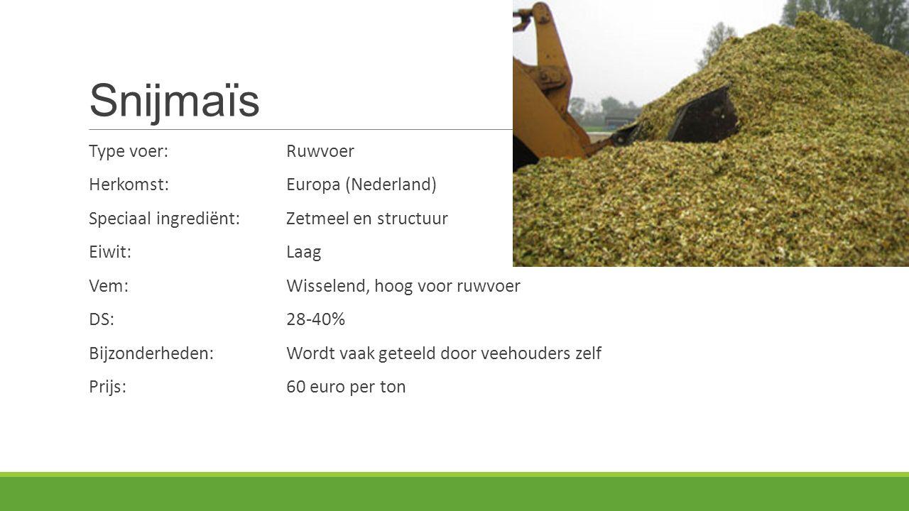Snijmaïs Type voer:Ruwvoer Herkomst: Europa (Nederland) Speciaal ingrediënt:Zetmeel en structuur Eiwit:Laag Vem:Wisselend, hoog voor ruwvoer DS:28-40% Bijzonderheden:Wordt vaak geteeld door veehouders zelf Prijs:60 euro per ton