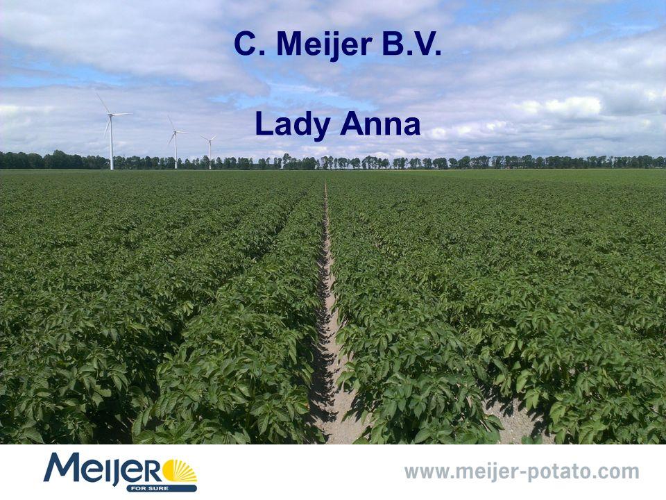 C. Meijer B.V. Lady Anna