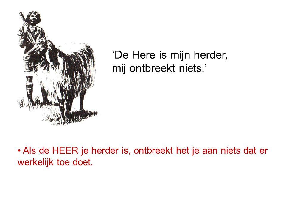 'De Here is mijn herder, mij ontbreekt niets.' Als de HEER je herder is, ontbreekt het je aan niets dat er werkelijk toe doet.
