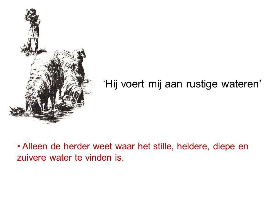 Alleen de herder weet waar het stille, heldere, diepe en zuivere water te vinden is. 'Hij voert mij aan rustige wateren'
