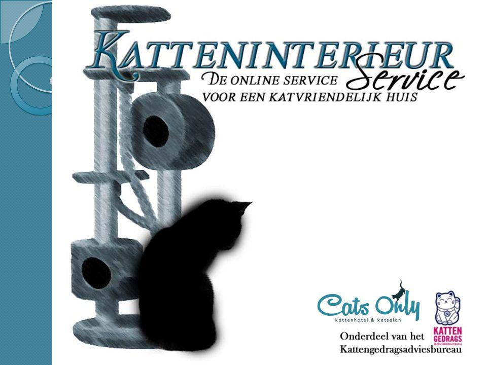 Overige adviezen ◦ Feliway -> stress verlagend; ◦ Plaats voerbakken, waterbakken en kattenbakken niet naast elkaar; ◦ Rekening houden met senioren katten; ◦ Temperatuur.