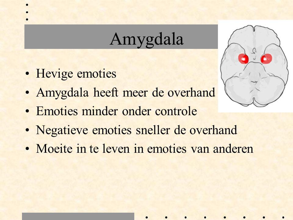 Amygdala Hevige emoties Amygdala heeft meer de overhand Emoties minder onder controle Negatieve emoties sneller de overhand Moeite in te leven in emoties van anderen