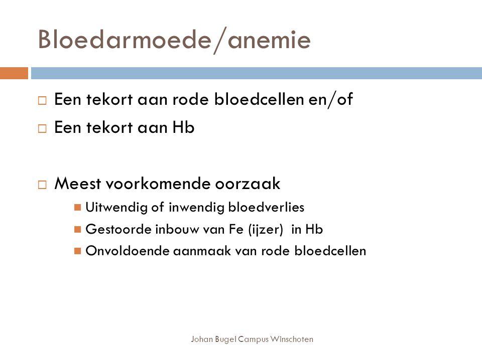 Bloedarmoede/anemie Johan Bugel Campus Winschoten  Een tekort aan rode bloedcellen en/of  Een tekort aan Hb  Meest voorkomende oorzaak Uitwendig of inwendig bloedverlies Gestoorde inbouw van Fe (ijzer) in Hb Onvoldoende aanmaak van rode bloedcellen