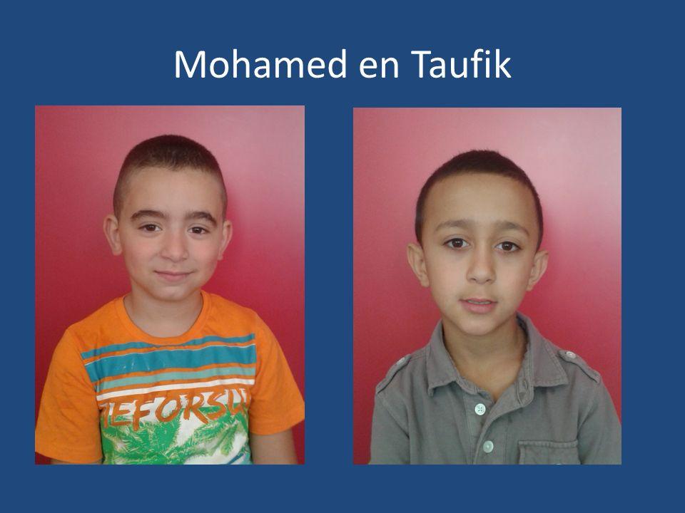 Mohamed en Taufik