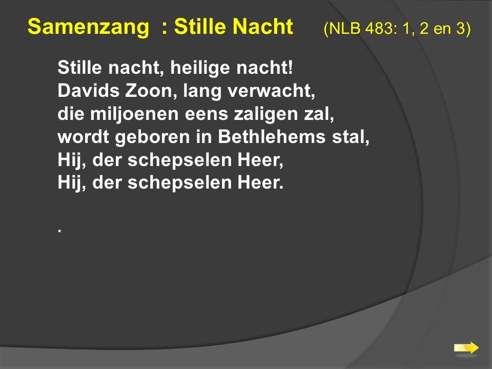 Samenzang : Stille Nacht (NLB 483: 1, 2 en 3) Stille nacht, heilige nacht.