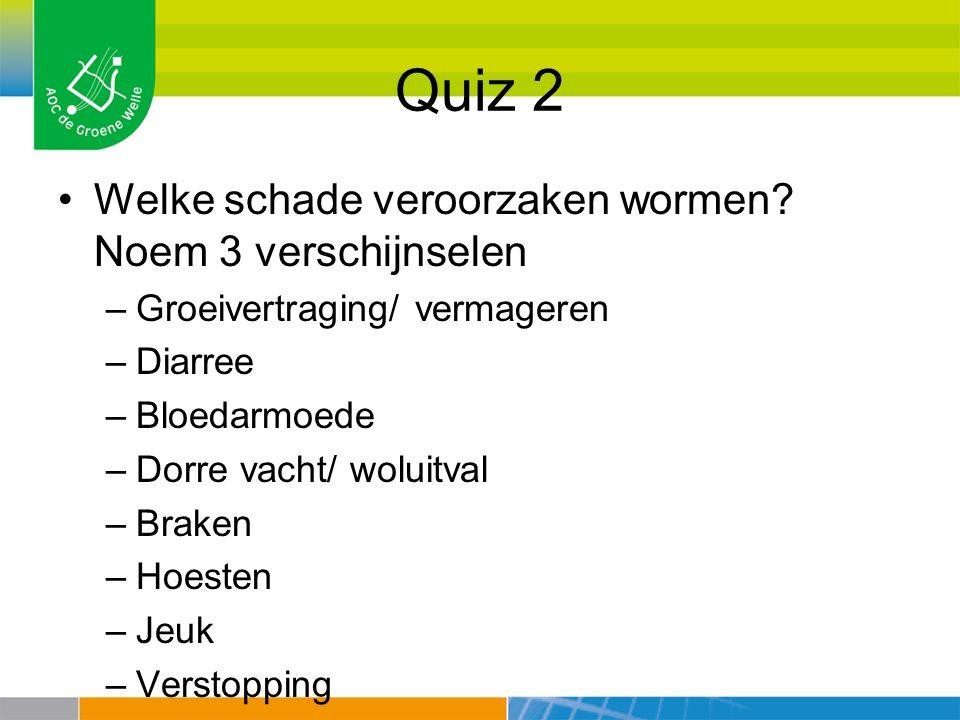 Quiz 2 Welke schade veroorzaken wormen? Noem 3 verschijnselen –Groeivertraging/ vermageren –Diarree –Bloedarmoede –Dorre vacht/ woluitval –Braken –Hoe