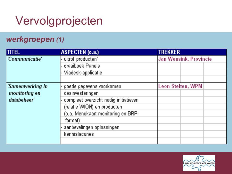 Vervolgprojecten werkgroepen (1)