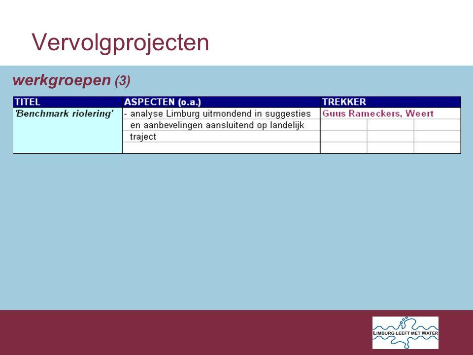 Vervolgprojecten werkgroepen (3)